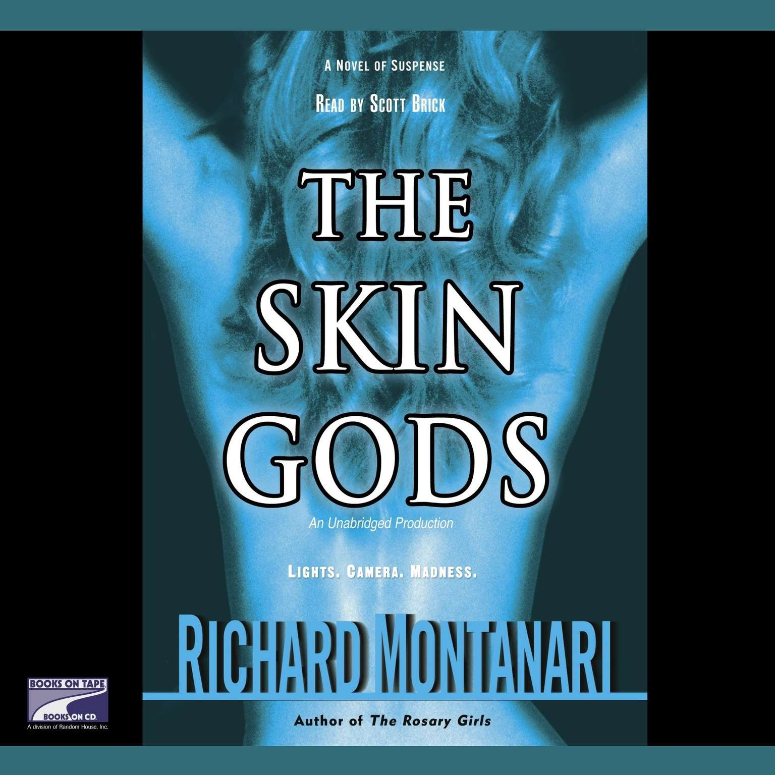 Printable The Skin Gods: A Novel of Suspense Audiobook Cover Art