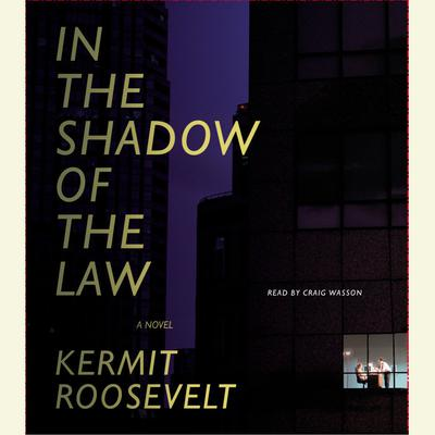 In the Shadow of the Law Audiobook, by Kermit Roosevelt