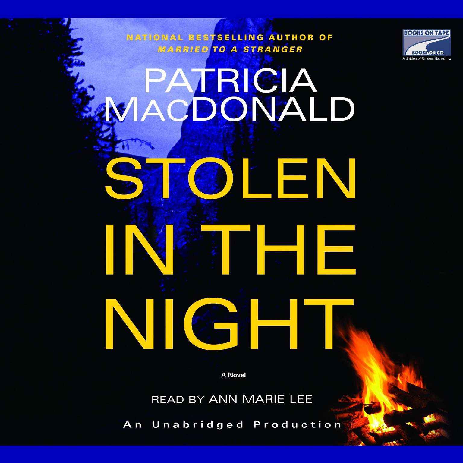 Printable Stolen in the Night Audiobook Cover Art