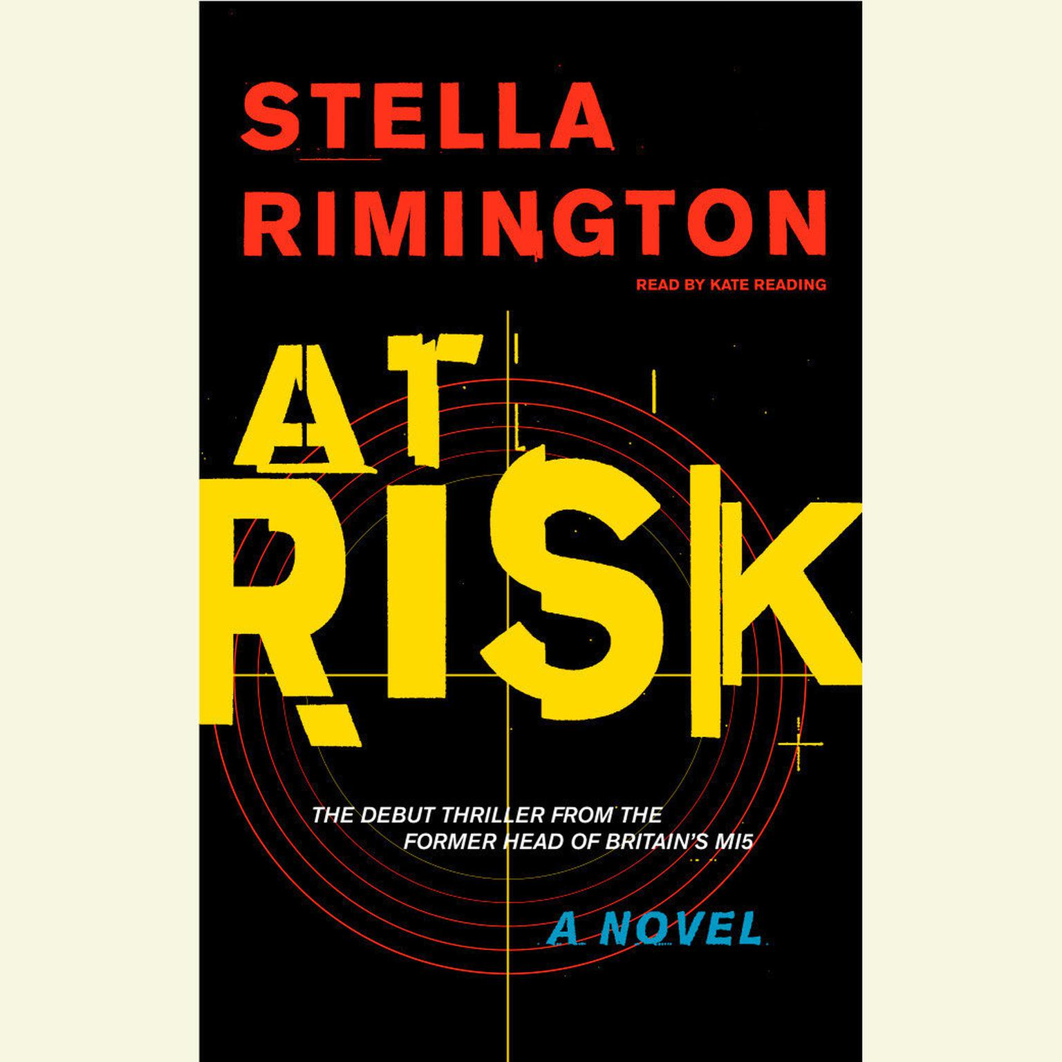 Printable At Risk Audiobook Cover Art