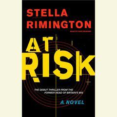 At Risk Audiobook, by Stella Rimington