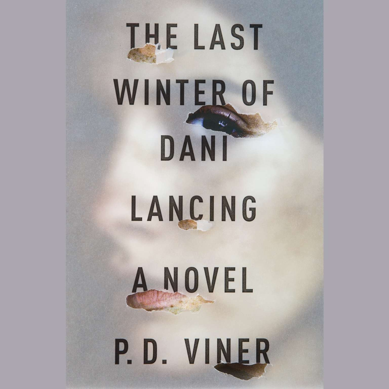 Printable The Last Winter of Dani Lancing: A Novel Audiobook Cover Art