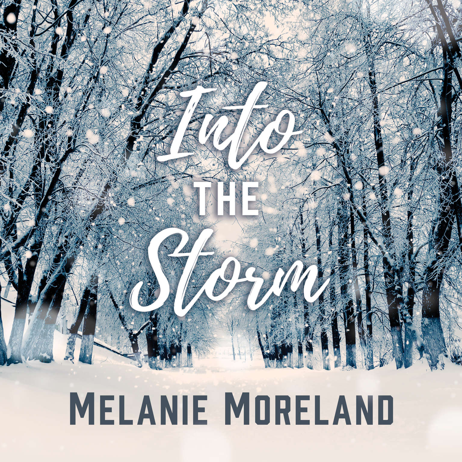 Into The Storm Audiobook, by Melanie Moreland