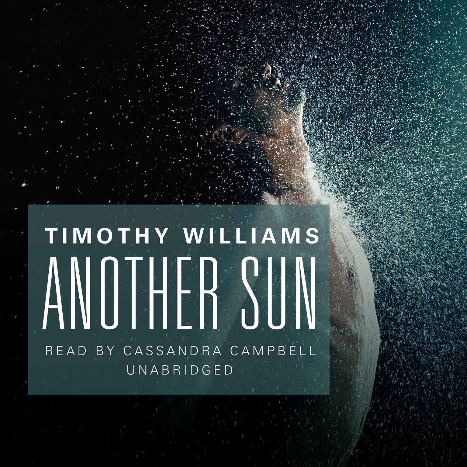 Printable Another Sun Audiobook Cover Art