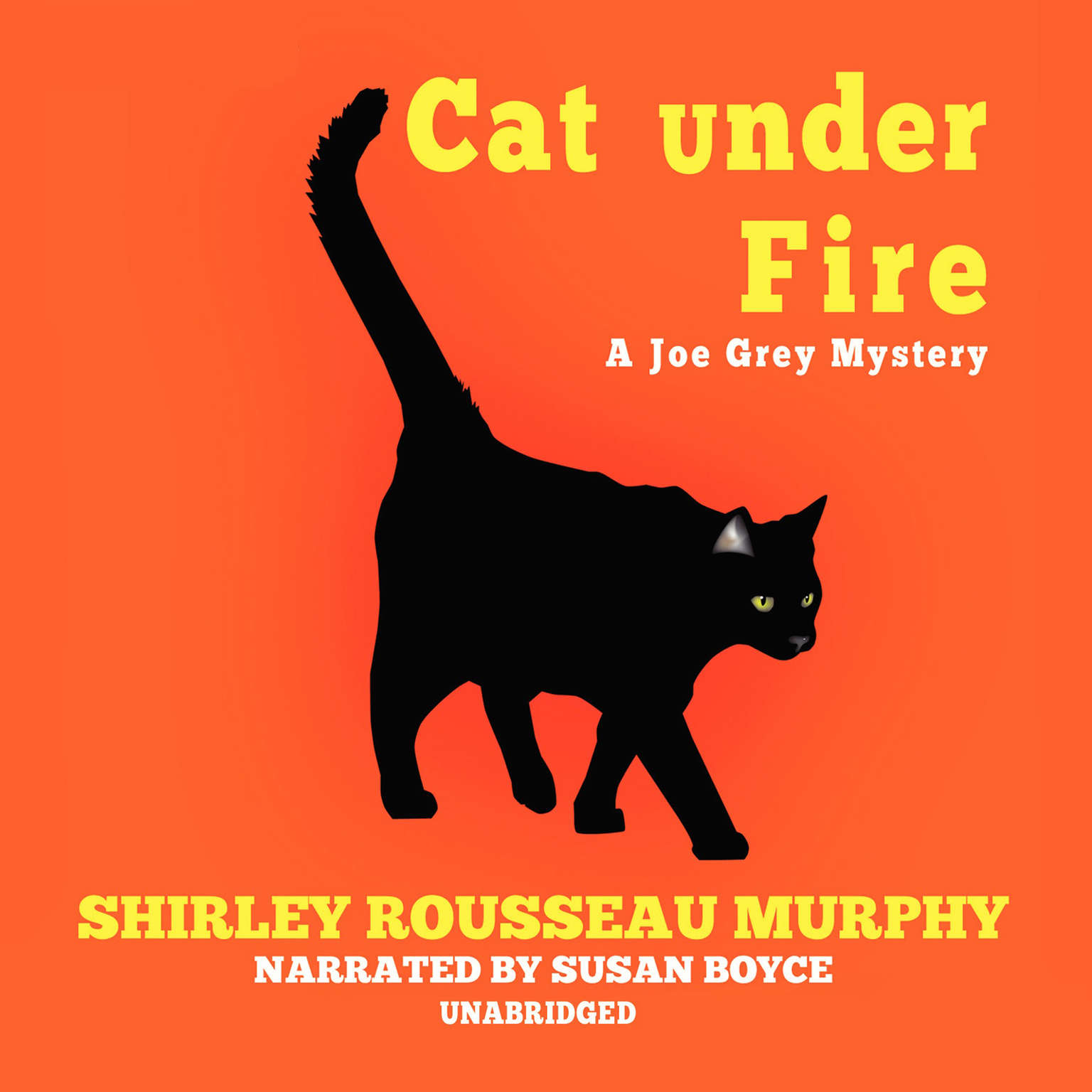 Printable Cat under Fire Audiobook Cover Art