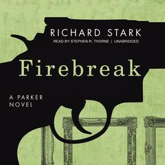 Firebreak Audiobook, by Donald E. Westlake