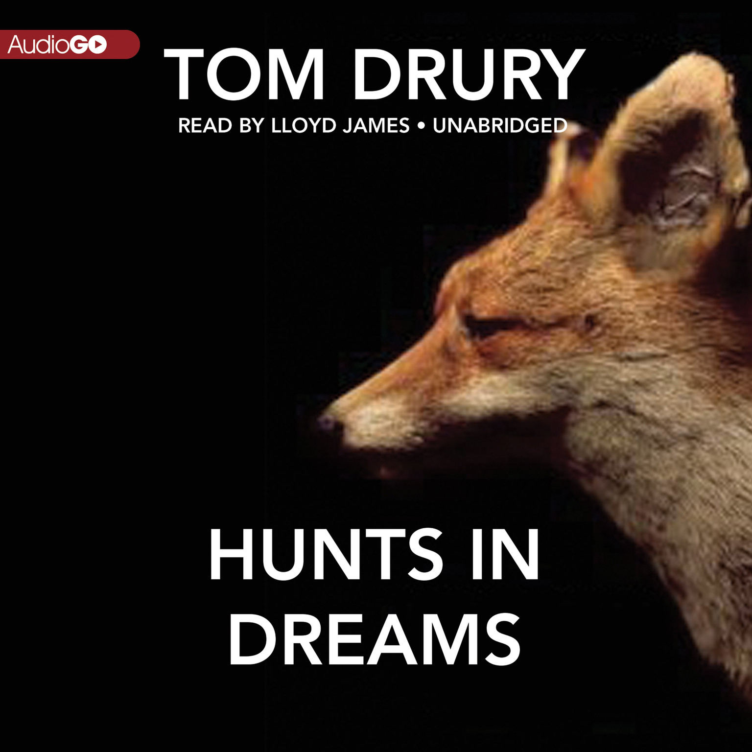 Printable Hunts in Dreams Audiobook Cover Art
