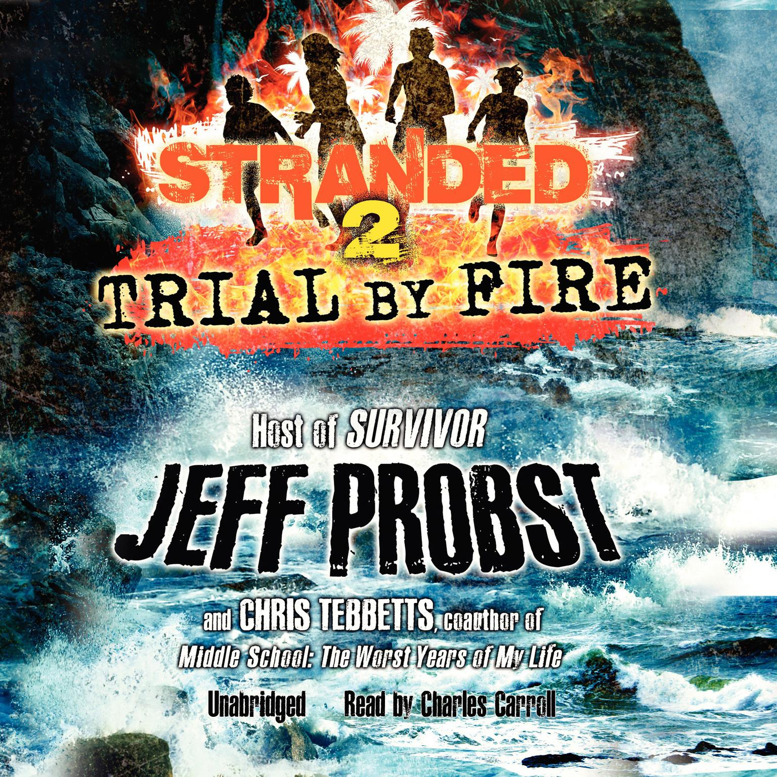 Printable Trial by Fire Audiobook Cover Art