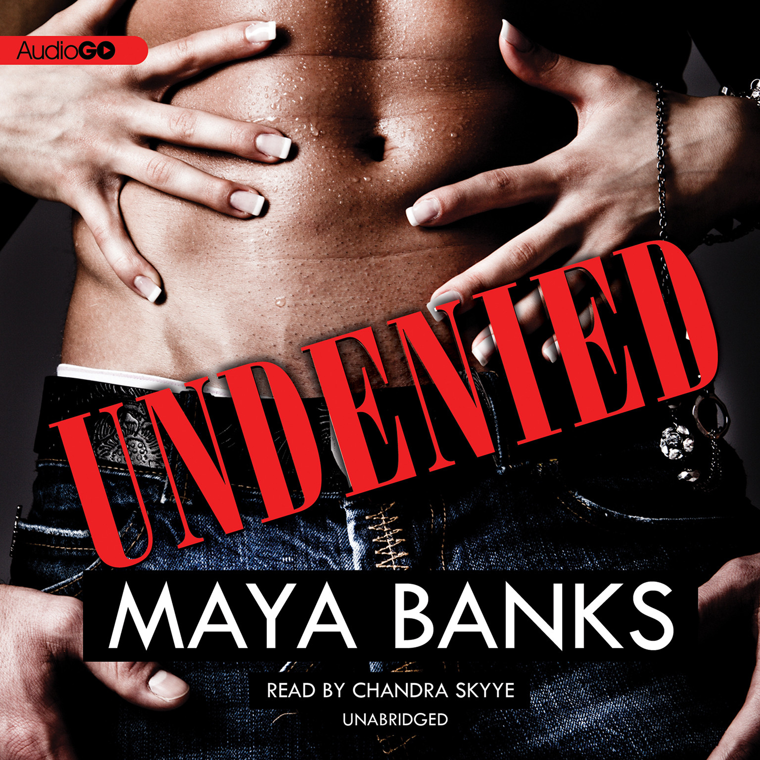 Printable Undenied Audiobook Cover Art