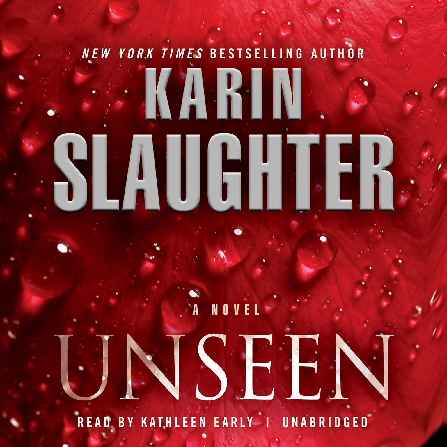 Printable Unseen: A Novel Audiobook Cover Art