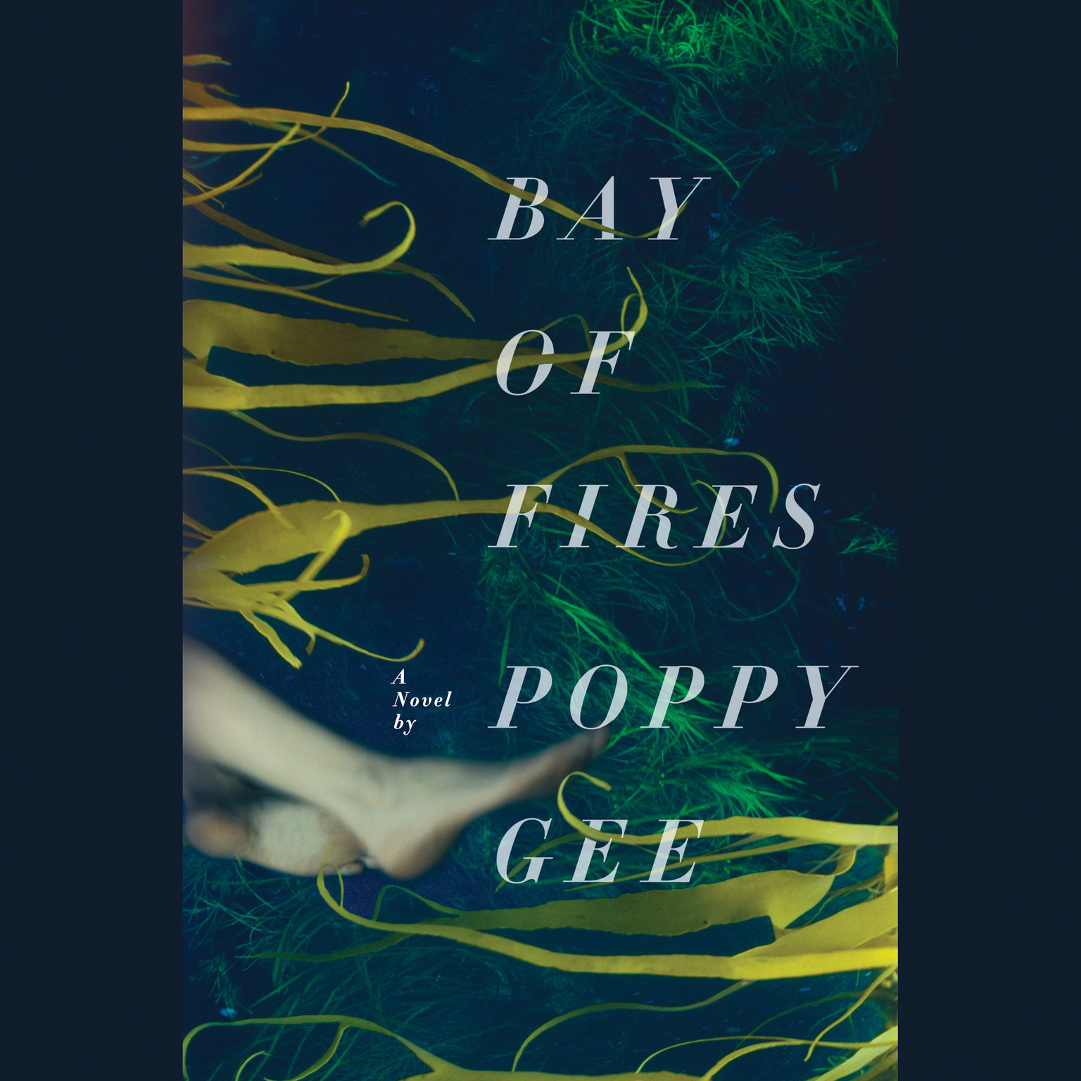 Printable Bay of Fires: A Novel Audiobook Cover Art