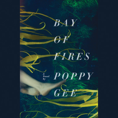 Bay of Fires: A Novel Audiobook, by Poppy Gee