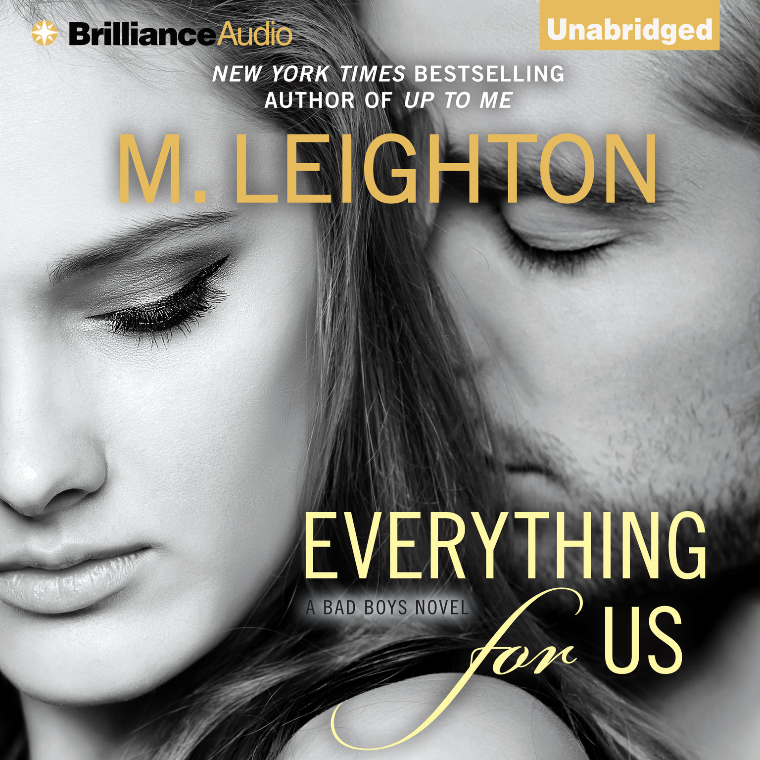 Printable Everything for Us Audiobook Cover Art