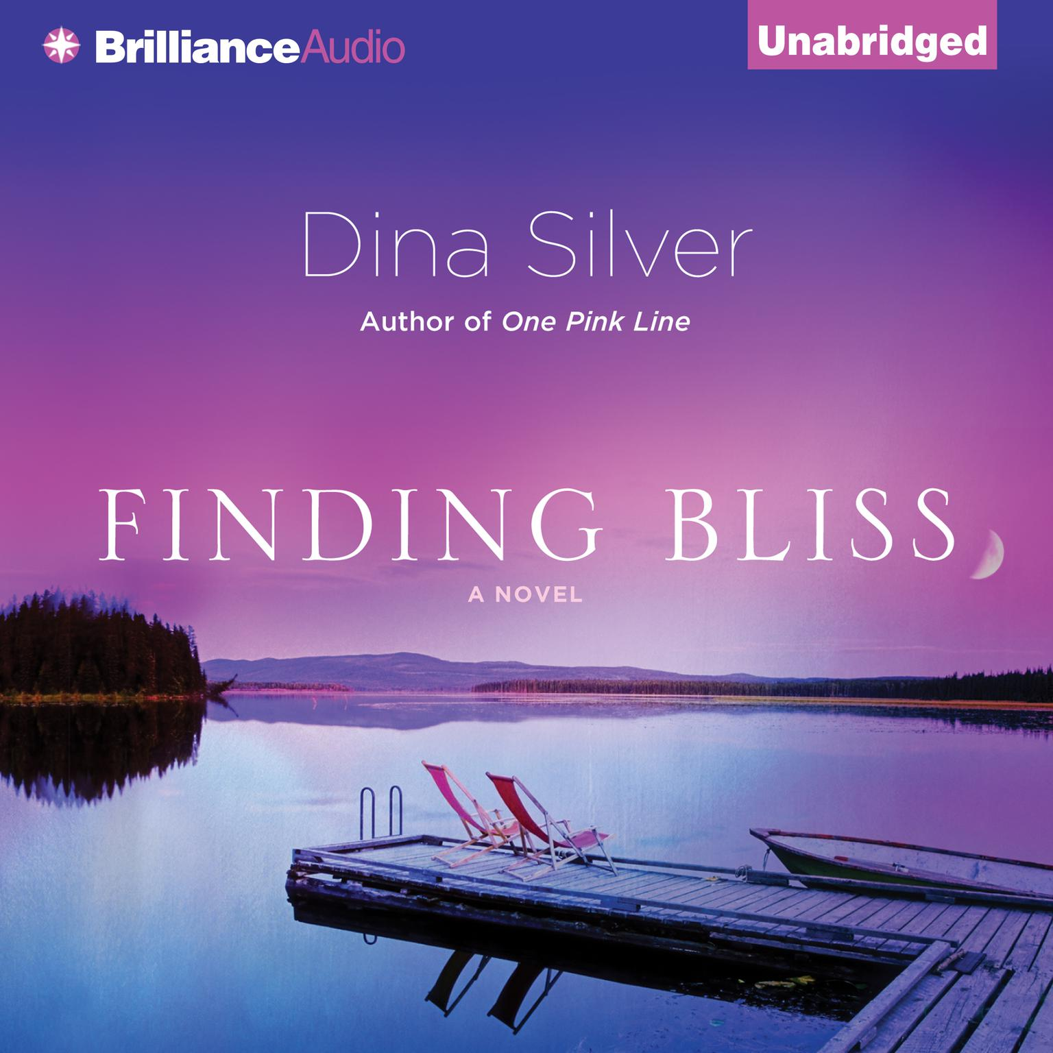 Finding Bliss Audiobook, by Dina Silver