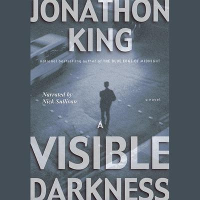 A Visible Darkness Audiobook, by
