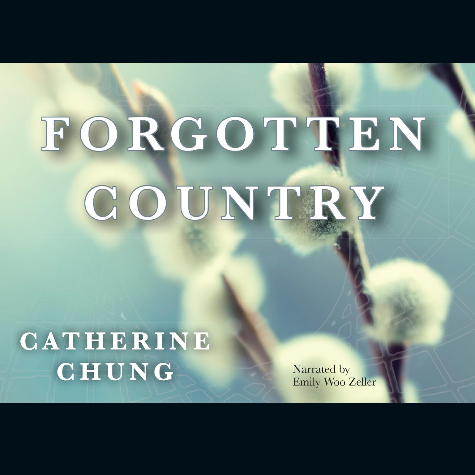 Printable Forgotten Country Audiobook Cover Art