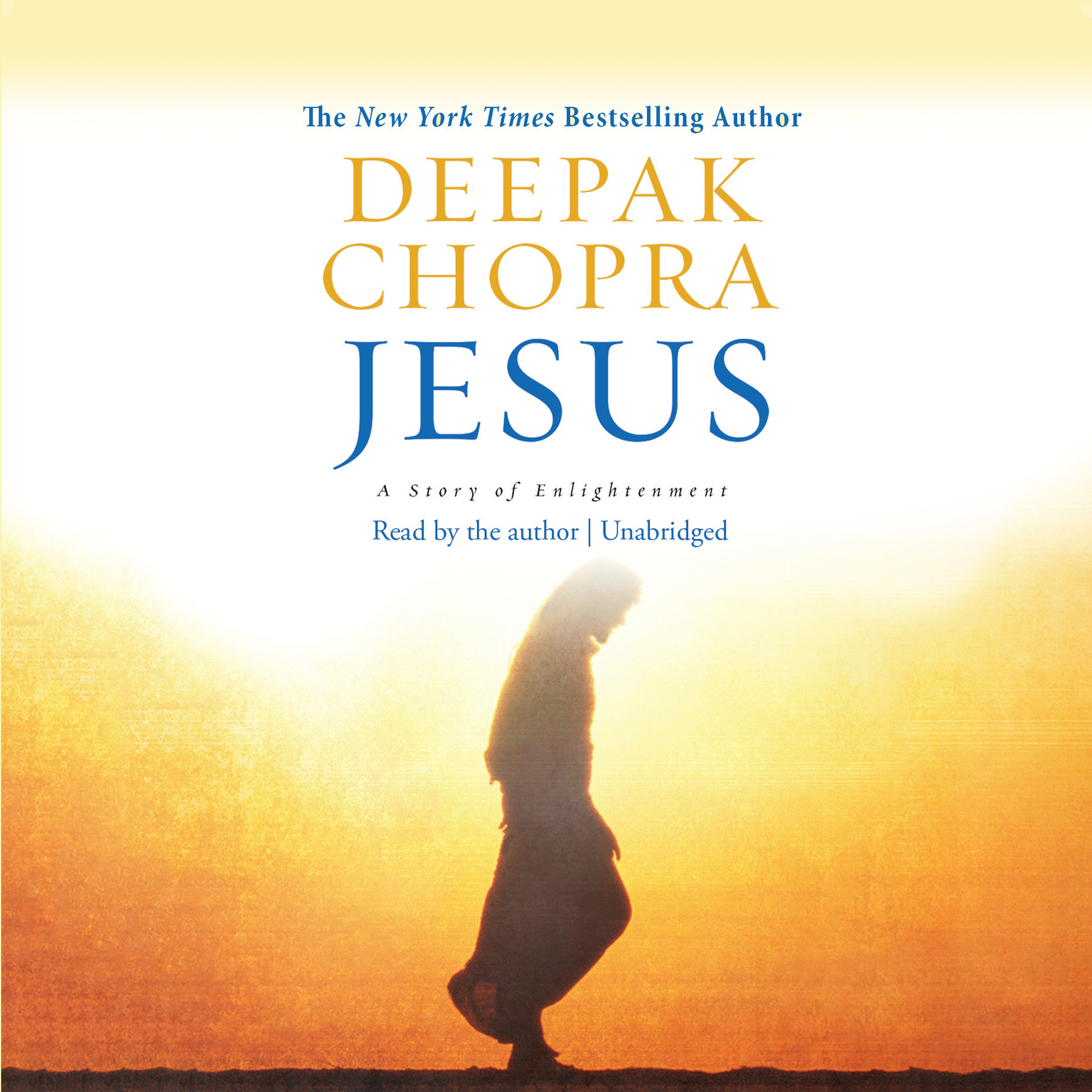 Printable Jesus: A Story of Enlightenment Audiobook Cover Art