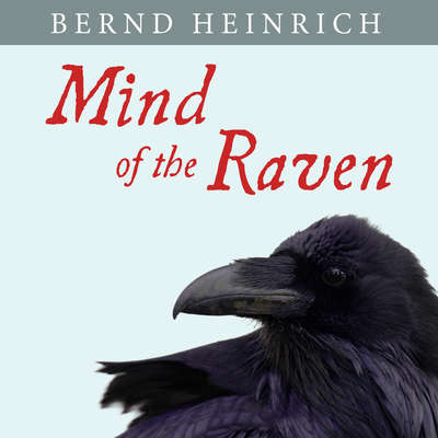 Mind of the Raven: Investigations and Adventures with Wolf-Birds Audiobook, by Bernd Heinrich