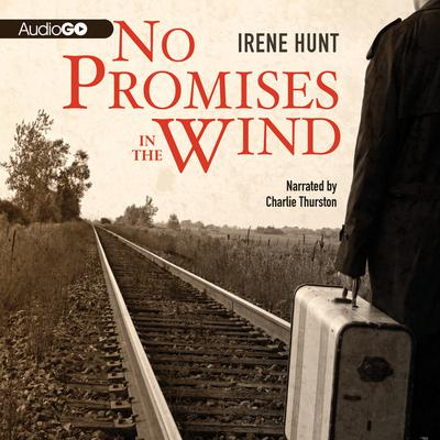 No Promises in the Wind Audiobook, by Irene Hunt
