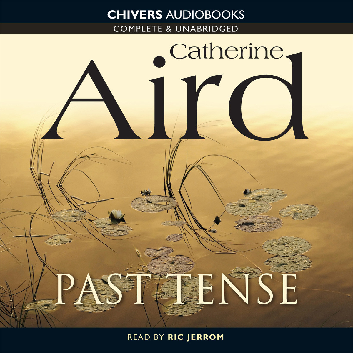 Printable Past Tense Audiobook Cover Art