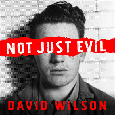 Not Just Evil: Murder, Hollywood, and California's First Insanity Plea Audiobook, by David Wilson