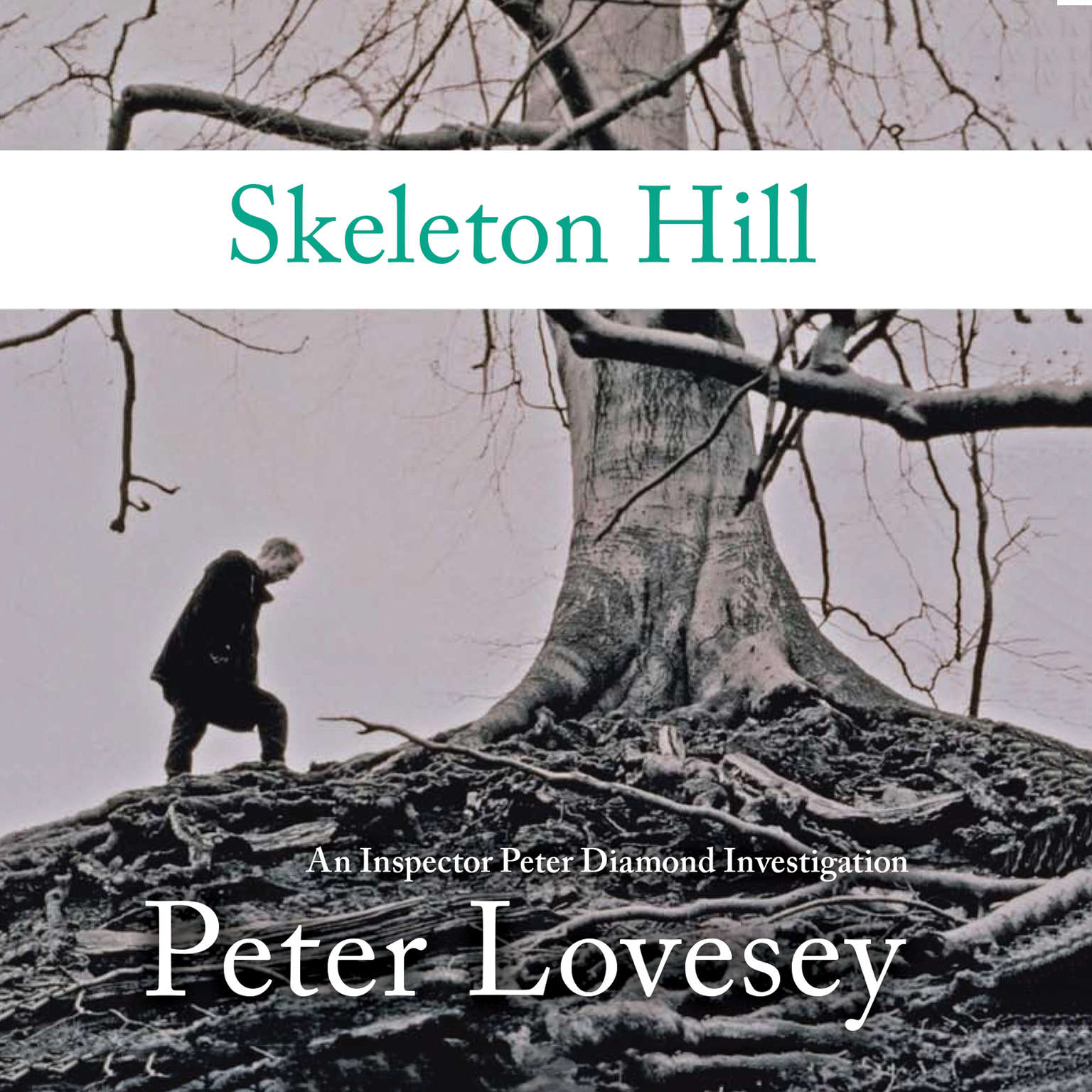 Printable Skeleton Hill Audiobook Cover Art