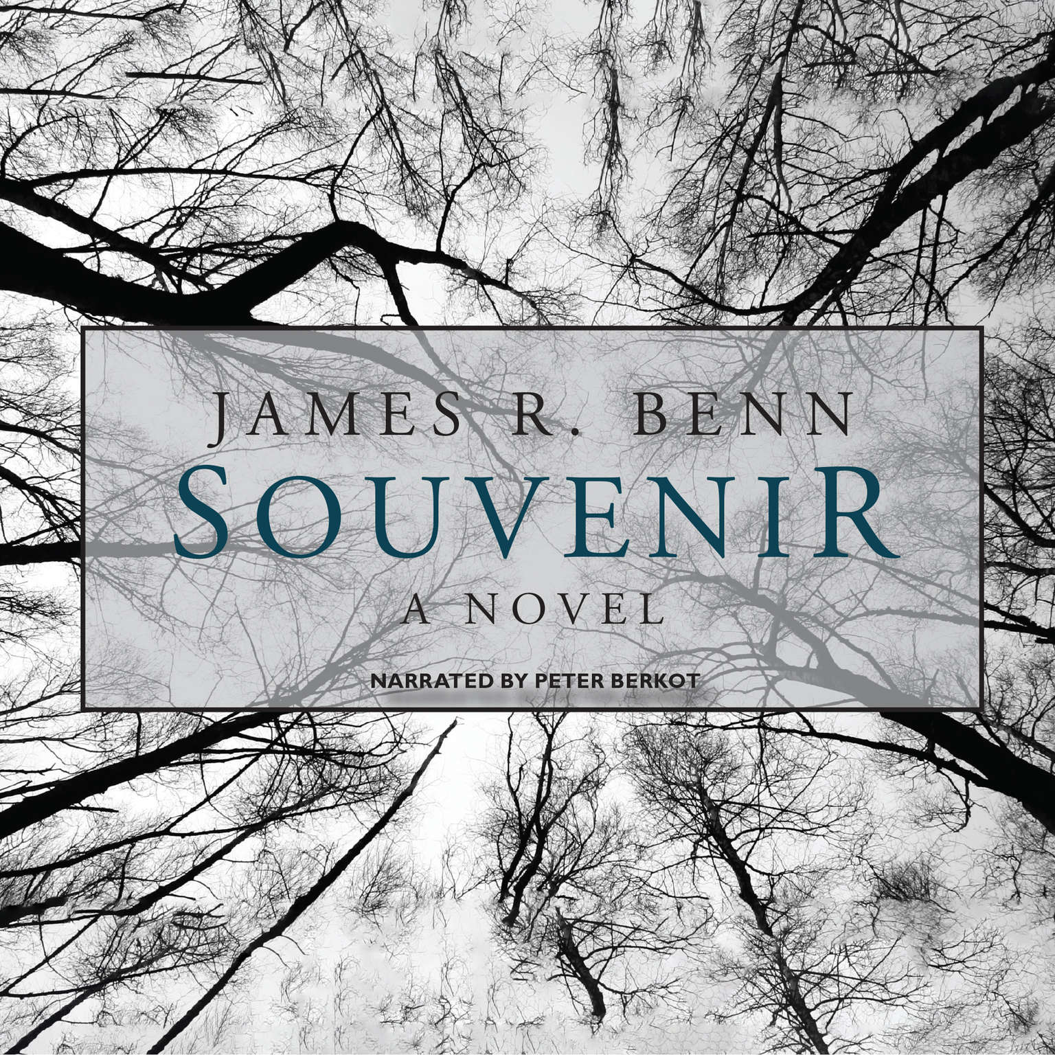 Printable Souvenir Audiobook Cover Art