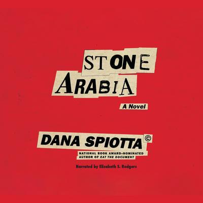 Stone Arabia Audiobook, by Dana Spiotta
