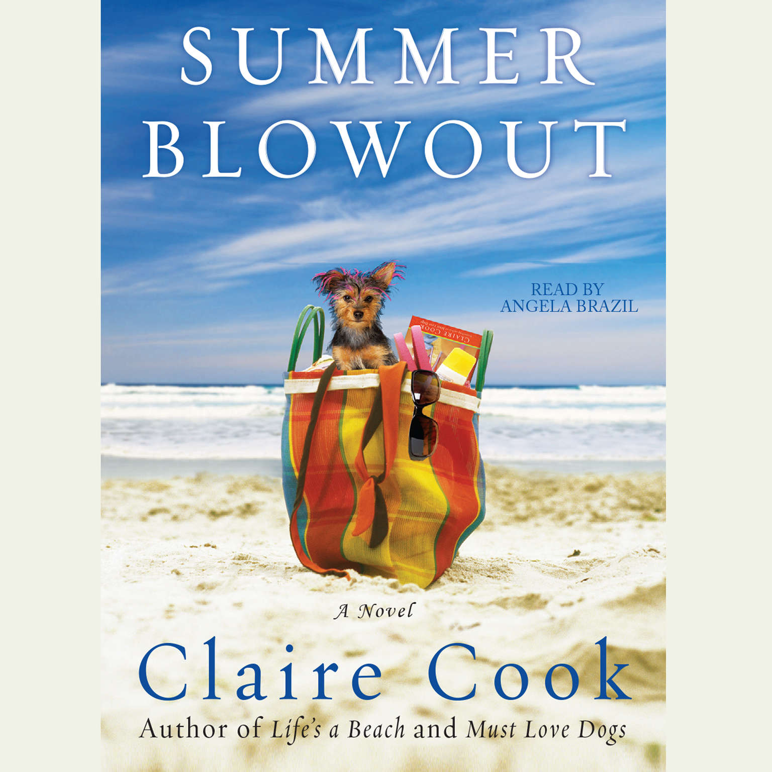 Printable Summer Blowout Audiobook Cover Art