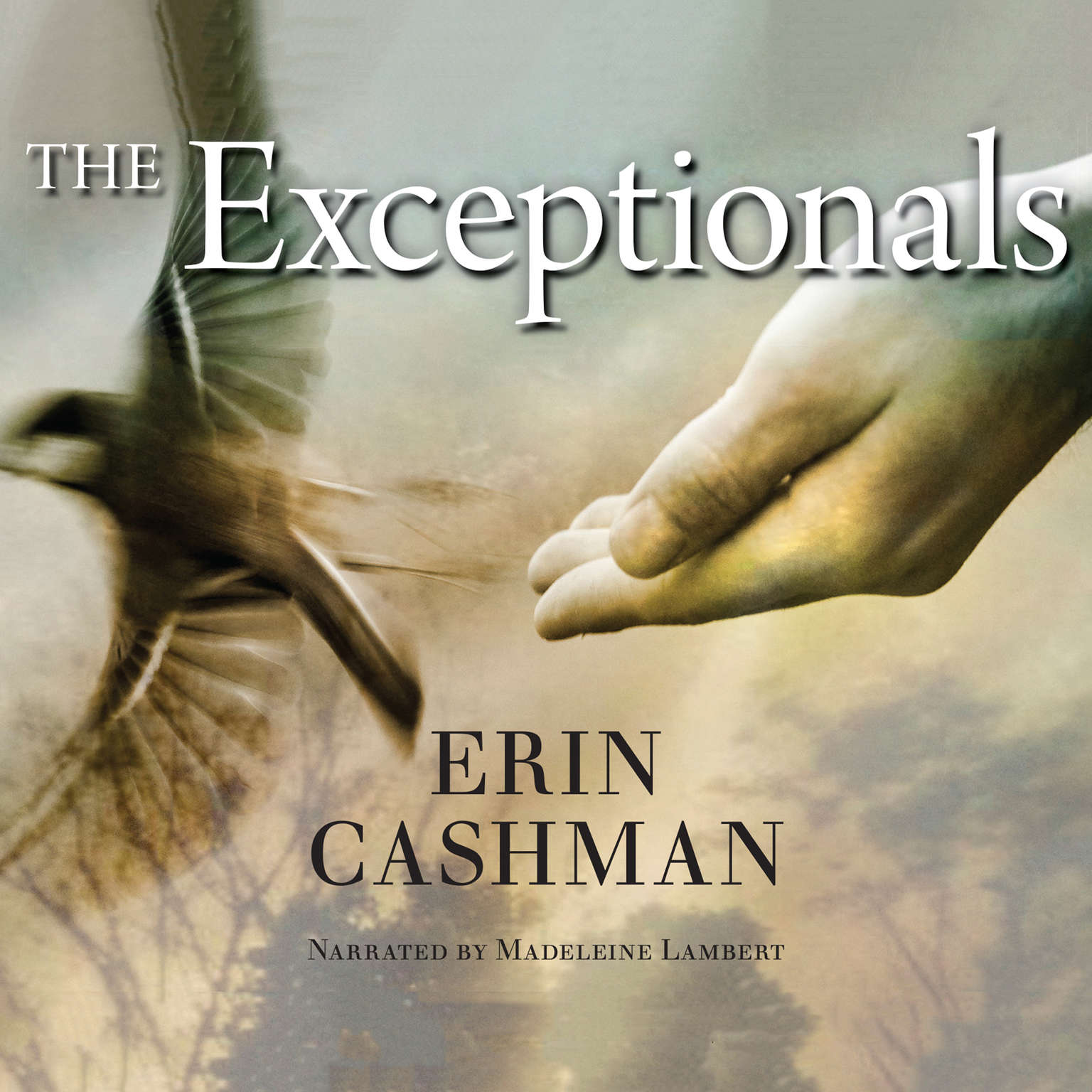Printable The Exceptionals Audiobook Cover Art