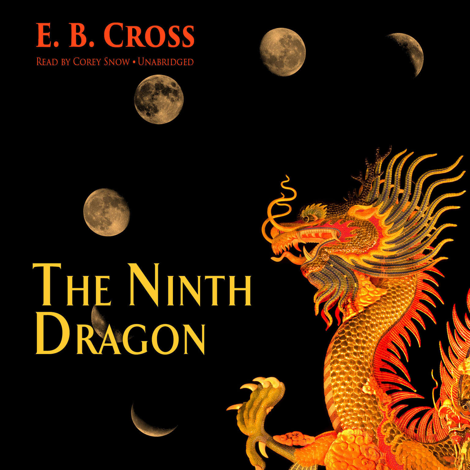Printable The Ninth Dragon Audiobook Cover Art