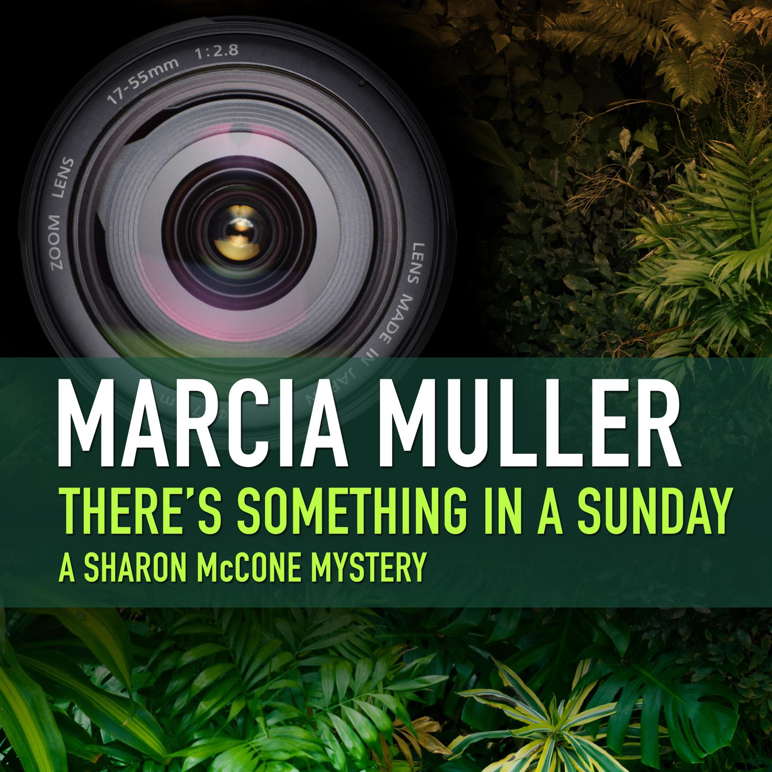 Printable There's Something in a Sunday Audiobook Cover Art
