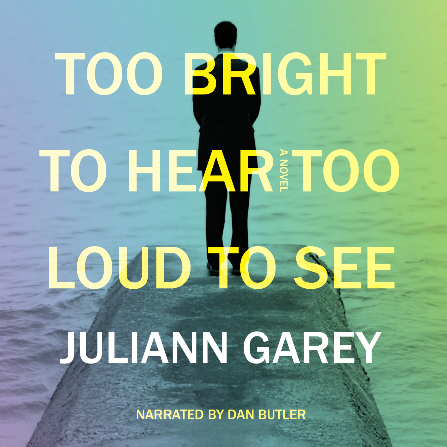Printable Too Bright to Hear, Too Loud to See Audiobook Cover Art