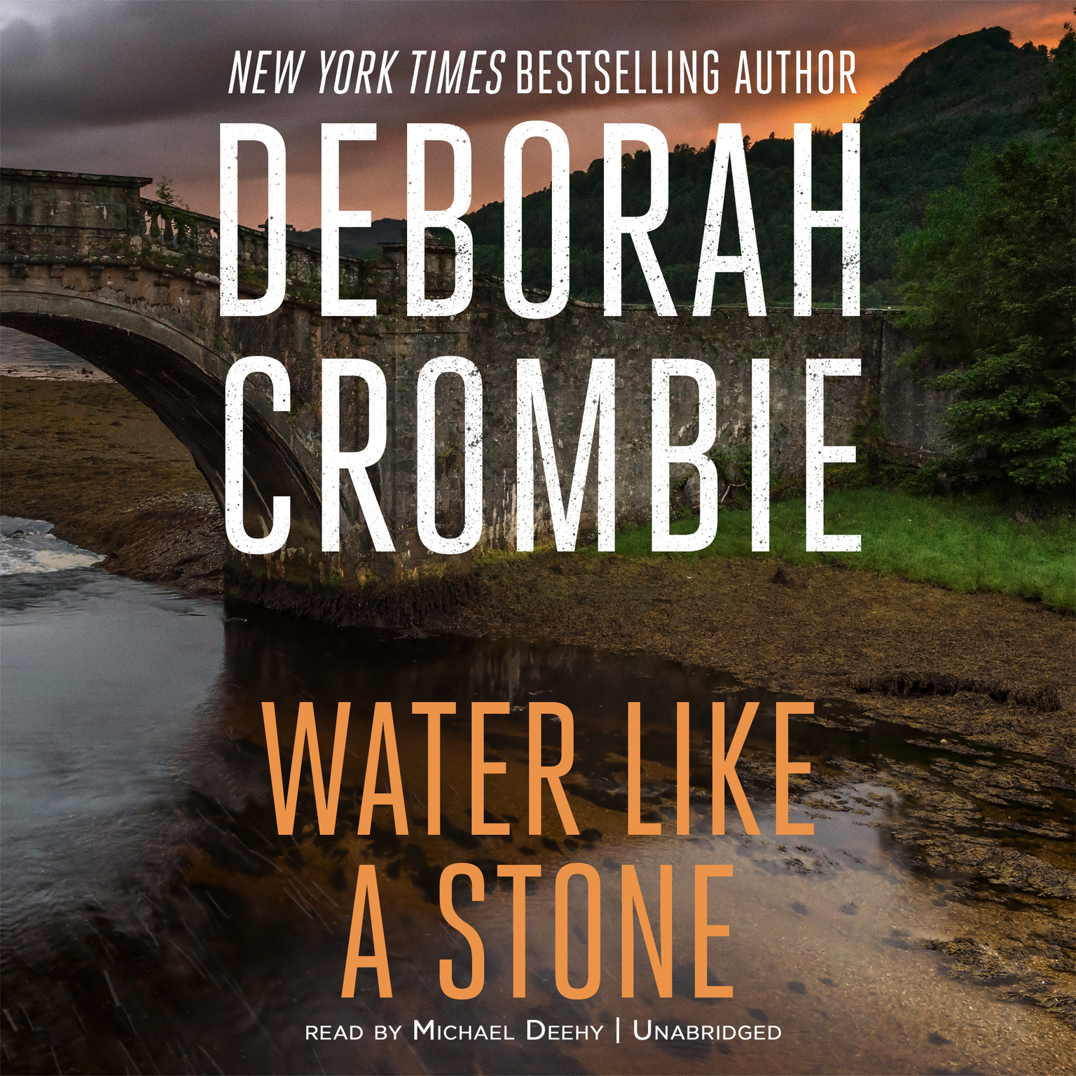 Printable Water Like a Stone Audiobook Cover Art