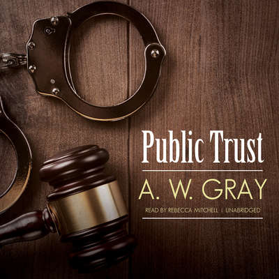 Public Trust Audiobook, by A. W. Gray