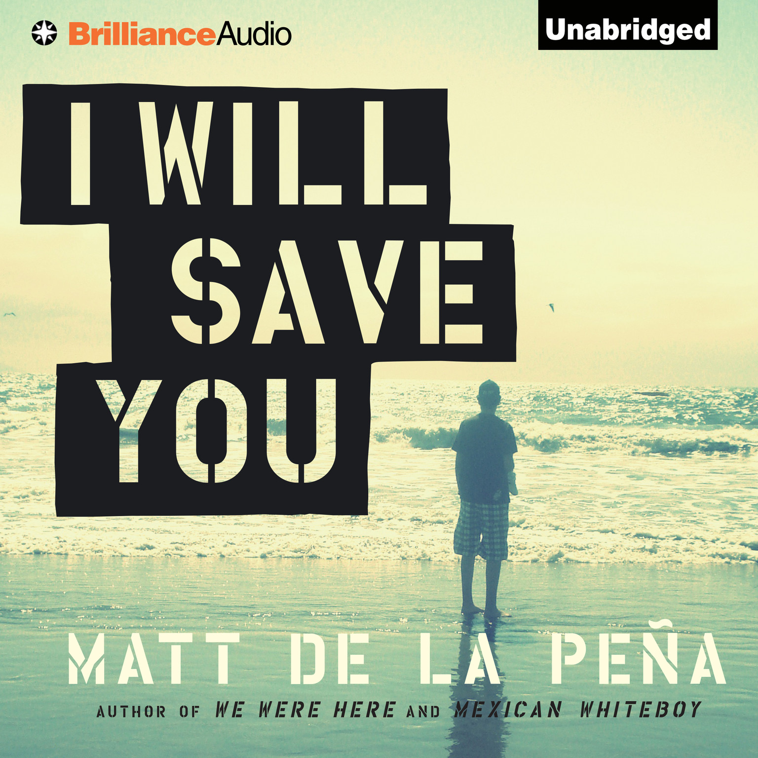 Printable I Will Save You Audiobook Cover Art