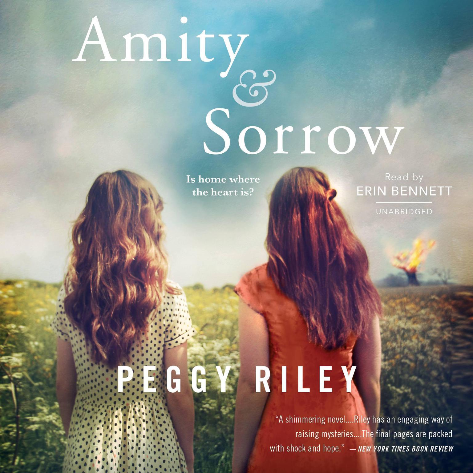 Printable Amity & Sorrow: A Novel Audiobook Cover Art