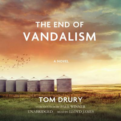 The End of Vandalism Audiobook, by Tom Drury