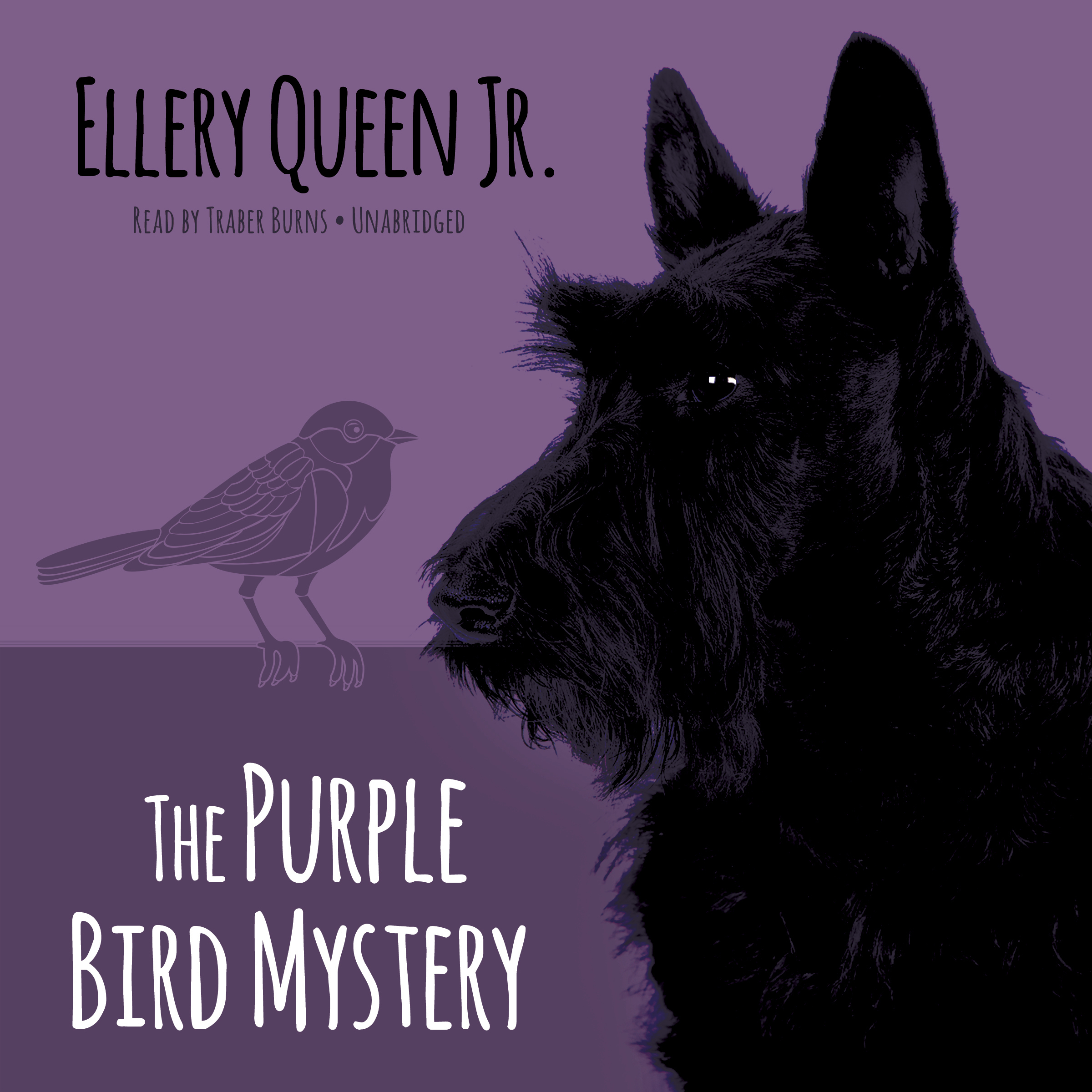 Printable The Purple Bird Mystery Audiobook Cover Art