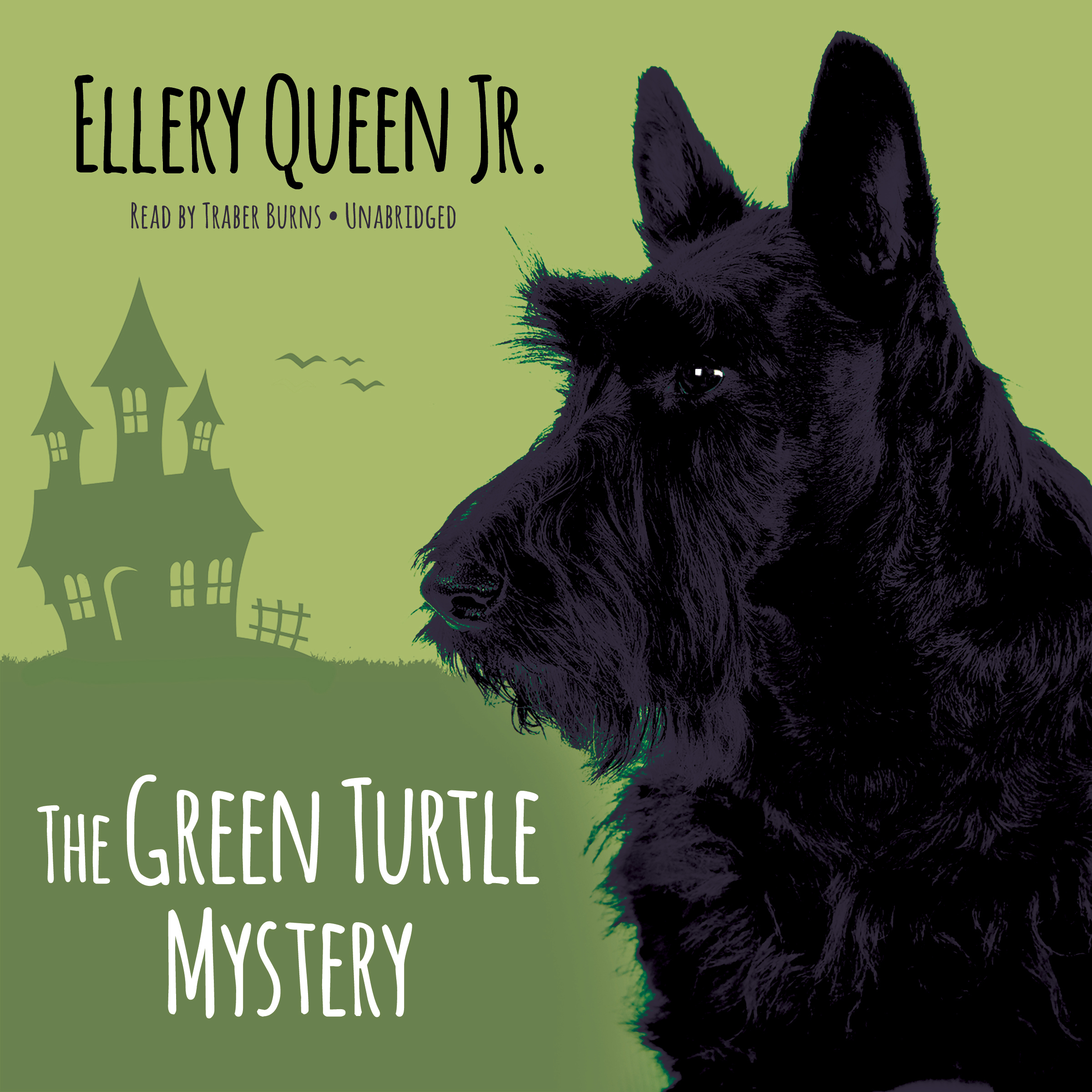 Printable The Green Turtle Mystery Audiobook Cover Art