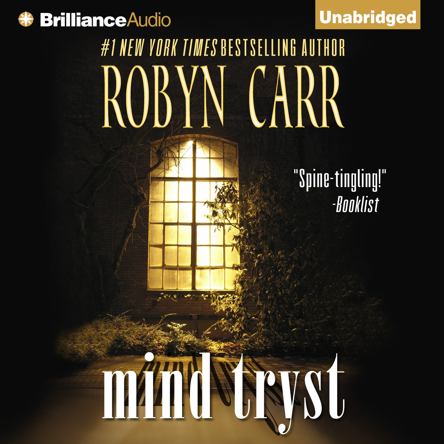 Printable Mind Tryst Audiobook Cover Art