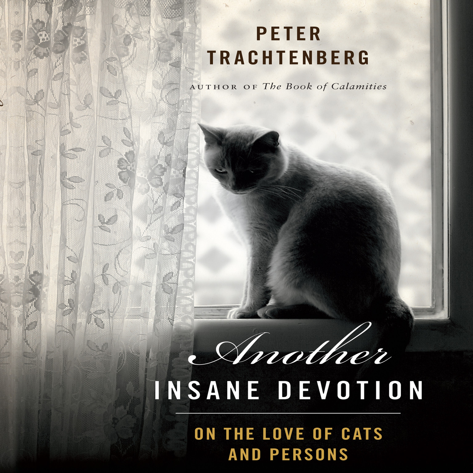 Printable Another Insane Devotion: On the Love of Cats and Persons Audiobook Cover Art