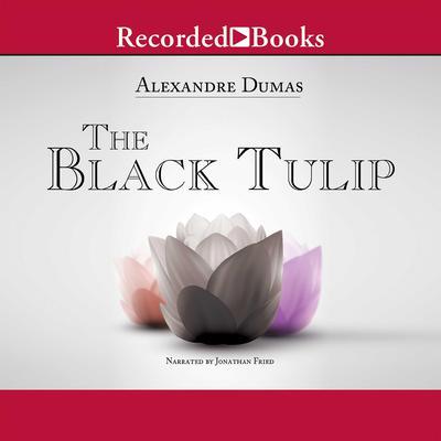 The Black Tulip Audiobook, by Alexandre Dumas
