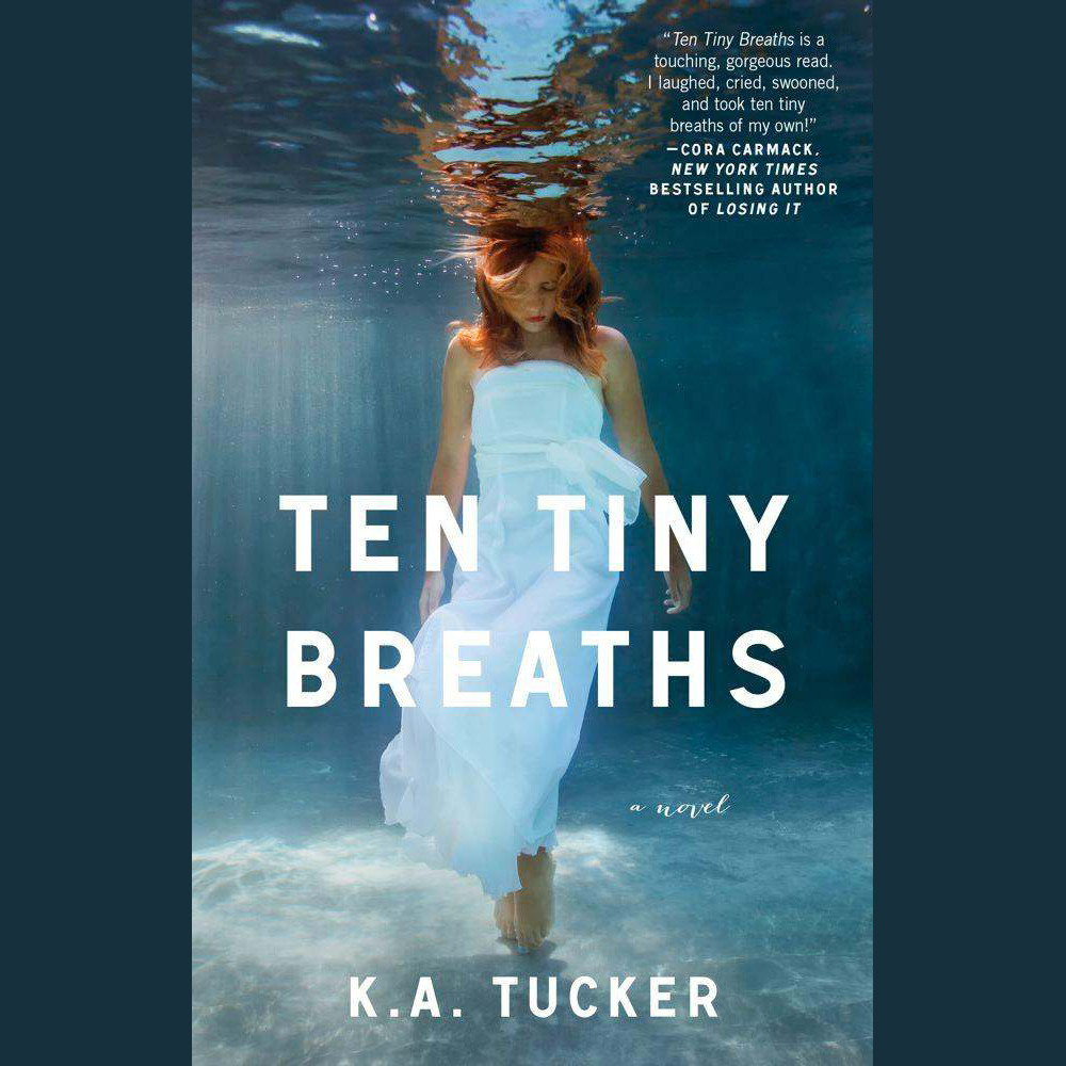 Printable Ten Tiny Breaths: A Novel Audiobook Cover Art