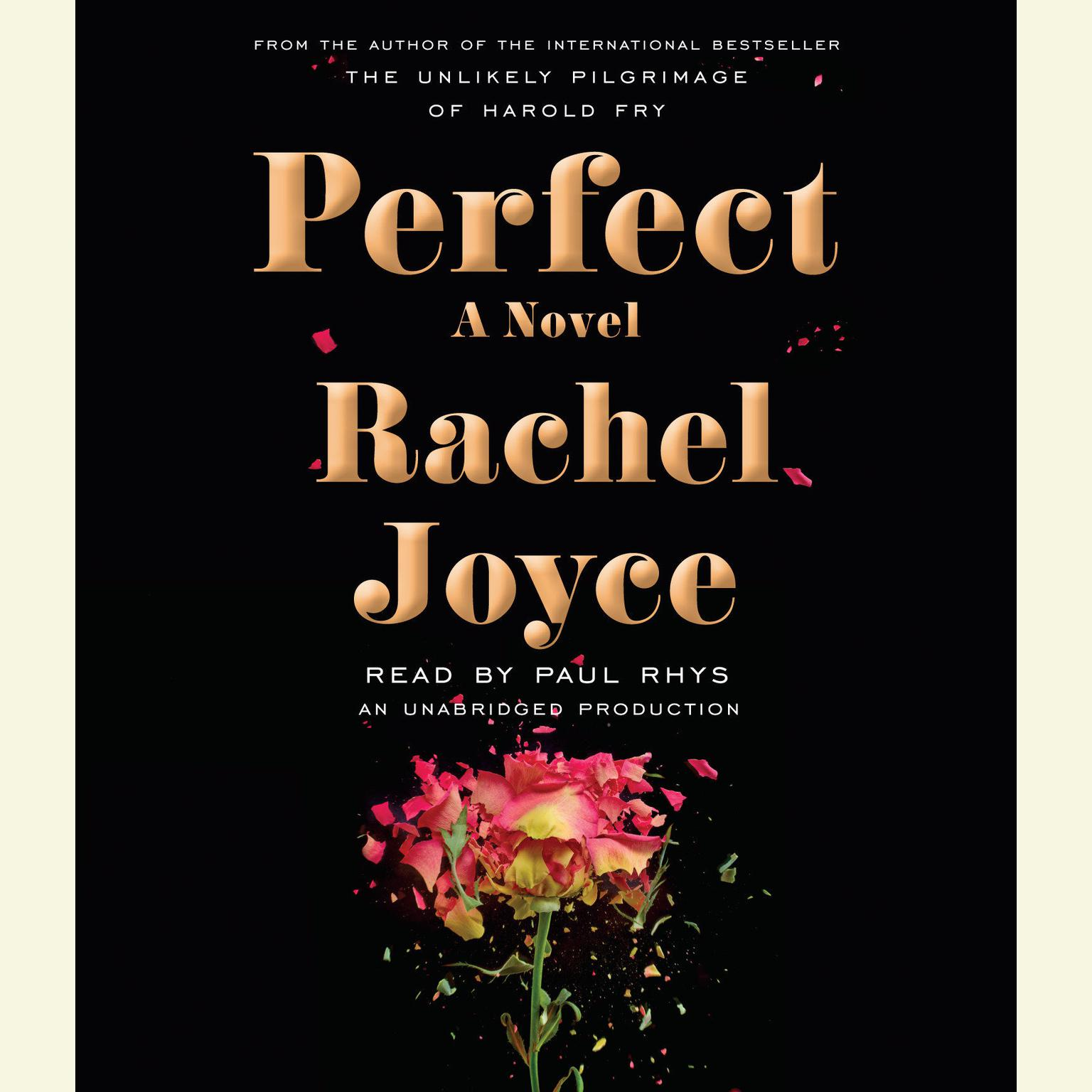 Printable Perfect: A Novel Audiobook Cover Art
