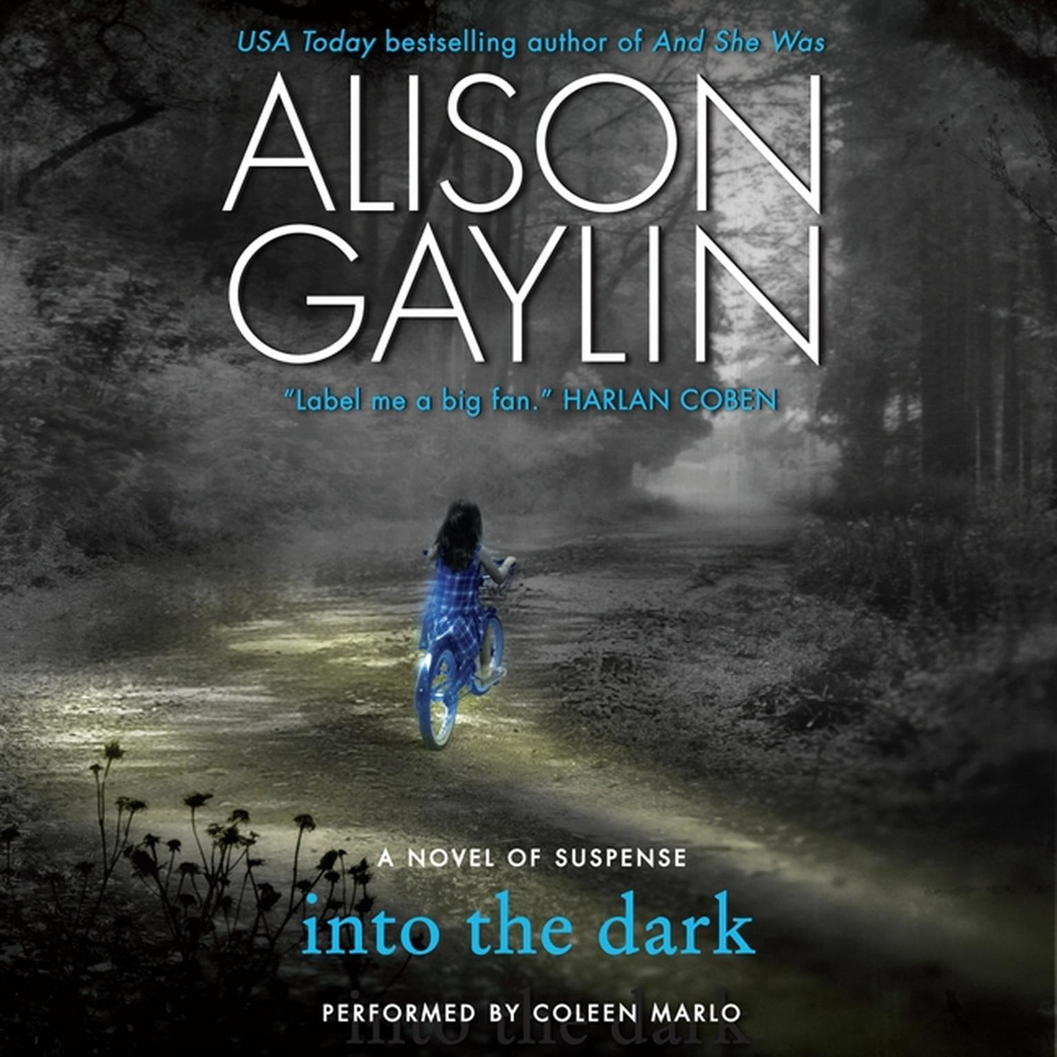 Printable Into the Dark: A Novel of Suspense Audiobook Cover Art