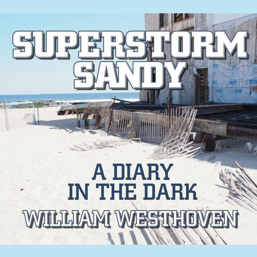 Printable Superstorm Sandy: A Diary in the Dark Audiobook Cover Art