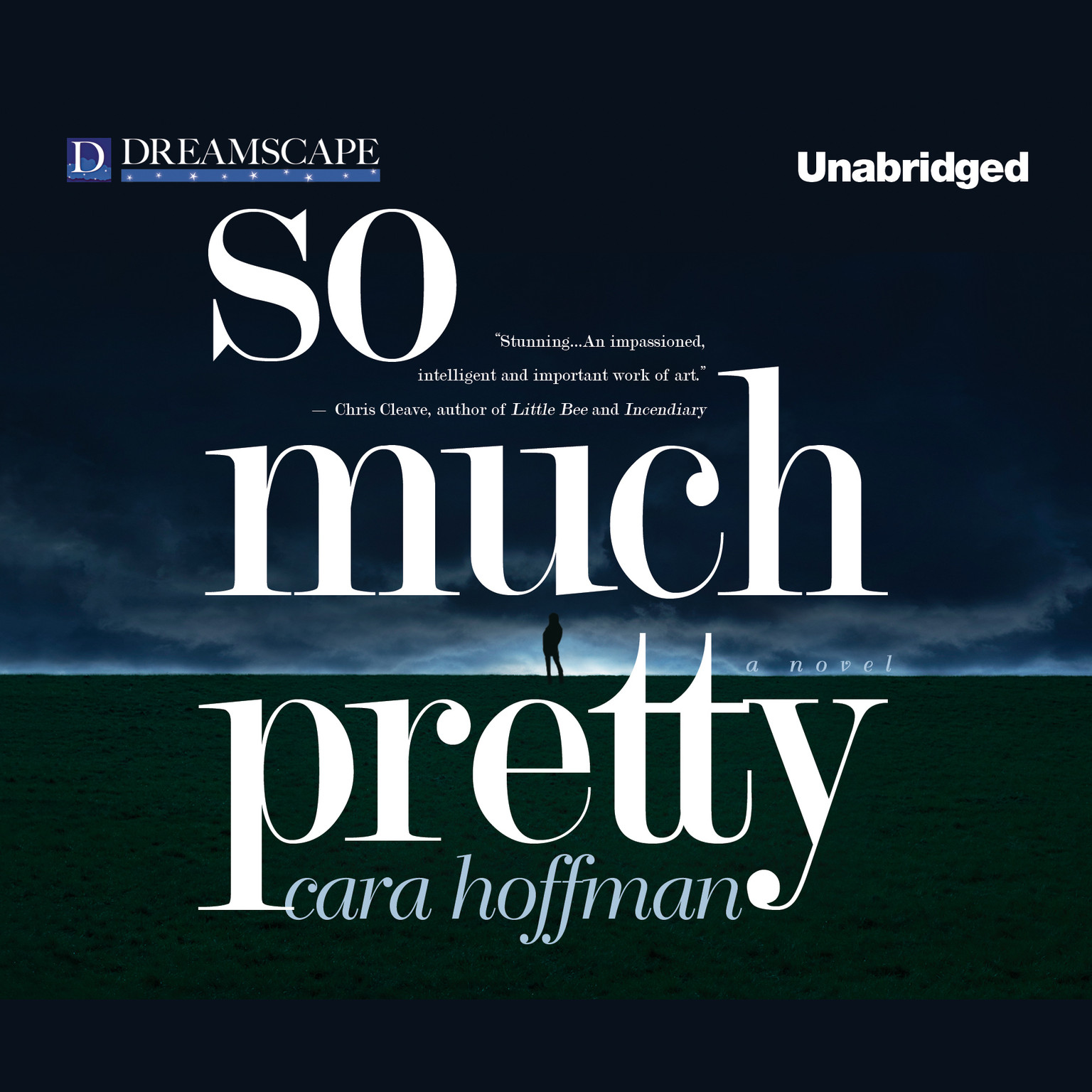 Printable So Much Pretty Audiobook Cover Art