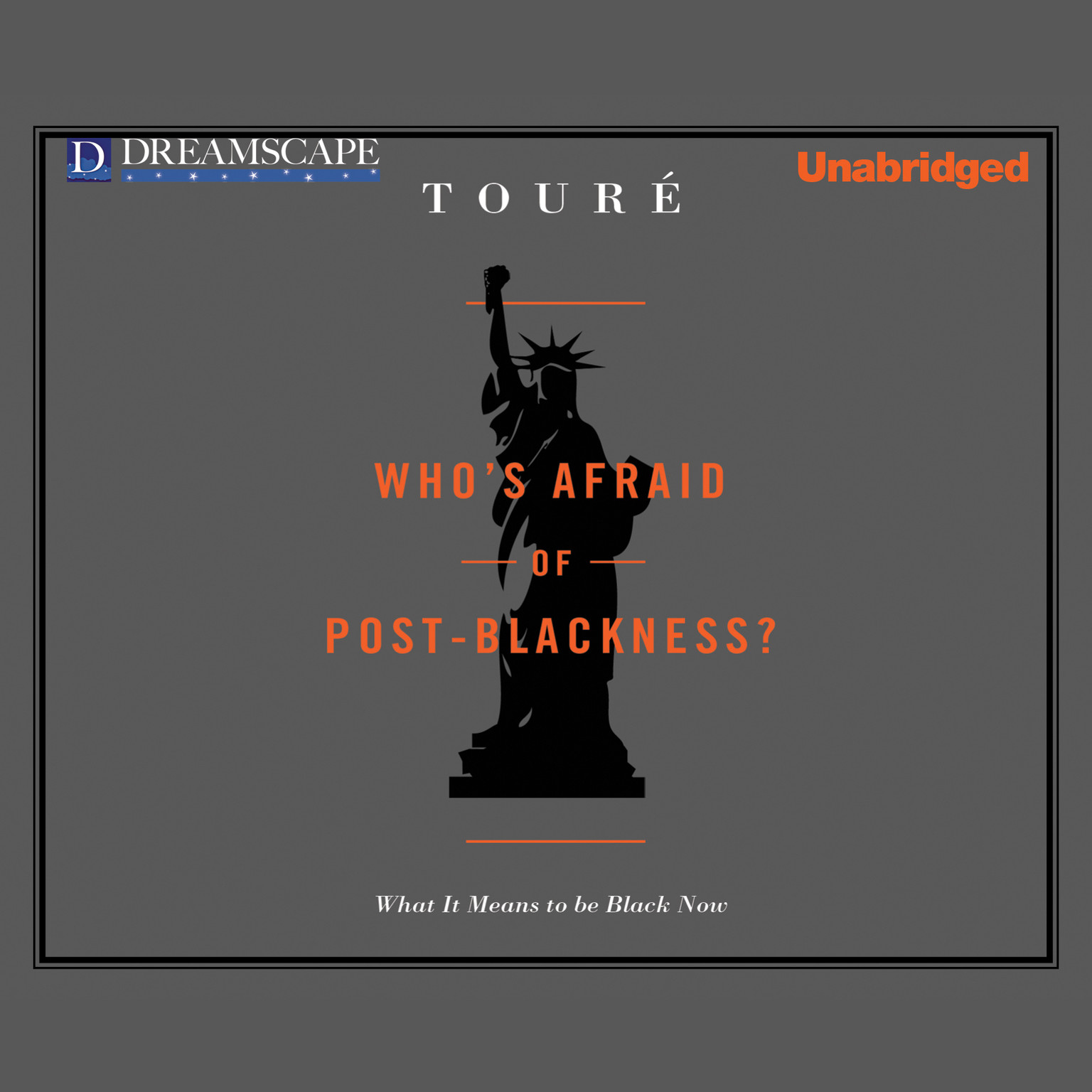 Printable Who's Afraid of Post-Blackness?: What it Means to be Black Now Audiobook Cover Art