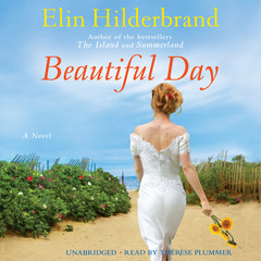 Beautiful Day: A Novel Audiobook, by